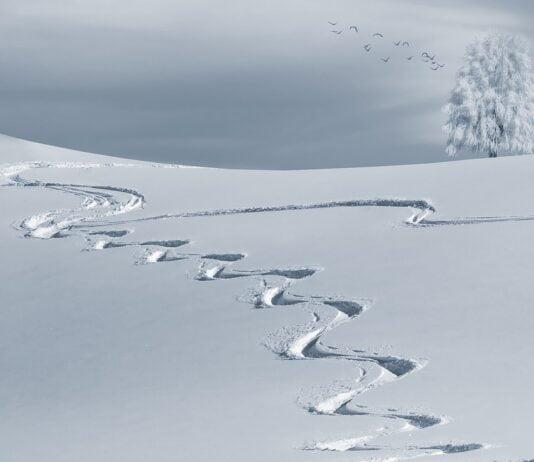 Anmeldelse af Trace Snow Ski Snowboard Track